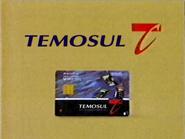 Temosul TVC 1995
