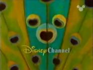 Disney Channel ID - Peacock (1999)