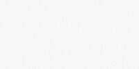 RuPaul's Drag Race (Season 7)
