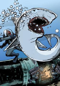 307 bump the shark