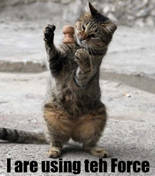 File:Forcecat.jpg