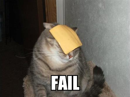 File:Funny Cat 2.jpg