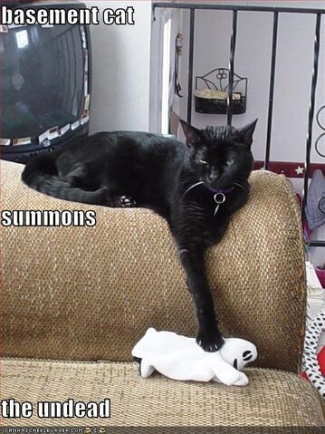 File:Cat-summons-the-undead.jpg