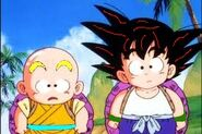 Kid krillin and goku training