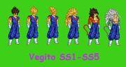Vegito Jr. Super Saiyan forms 1-5