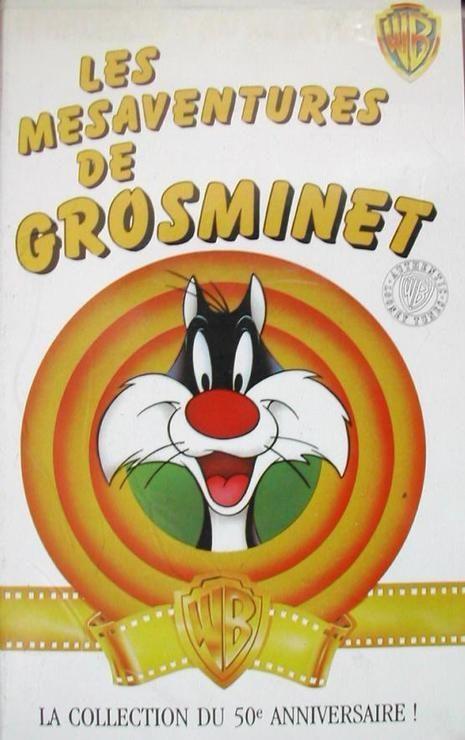 Mesaventures-De-Gros-Minet-Les-VHS-777697 ML