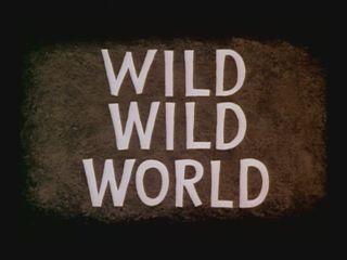 File:08-wildwildworld.jpg