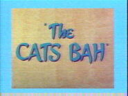 The Cats Bah