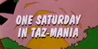 One Saturday in Taz-Mania