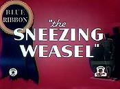 File:Sneezing weasel.jpg