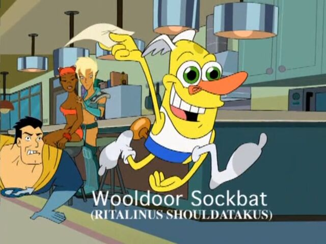 File:Drawn Together Wooldoor Sockbat as Road Runner.jpg