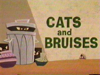 File:Cats and Bruises.jpg