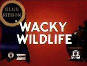 Wacky wildlife