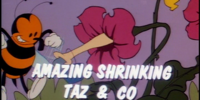 Amazing Shrinking Taz & Co