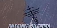Antenna Dilemma