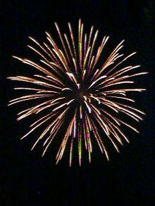 File:220px-Spider-Firework-Omiya-Japan.jpg