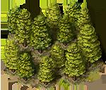 File:Forrest big 03.png