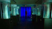 Kenzi in Legs lab (410)