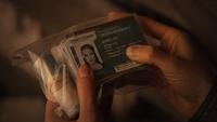 Bo fake IDs (101)