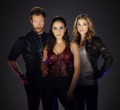 Wikia-Visualization-Add-3,lostgirl.png