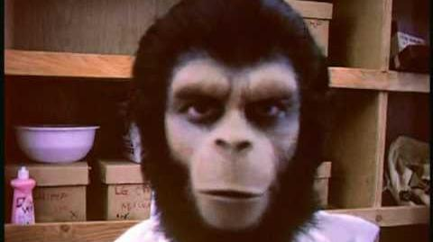 "Roddy McDowall's home movies from ""Planet Of The Apes"" (1968)"