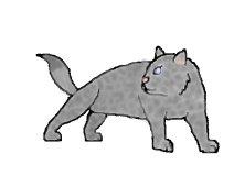 File:Greyspot.jpg