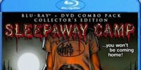 Sleepaway Camp (1983) lost soundtrack songs