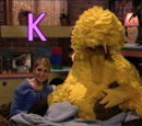 Sesame Street Episode 4026 aka Big Bird Finds a Turtle (2002 Episode Ending)