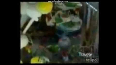 Inside of Macy's Parade (Partially Lost 1998 documentary)