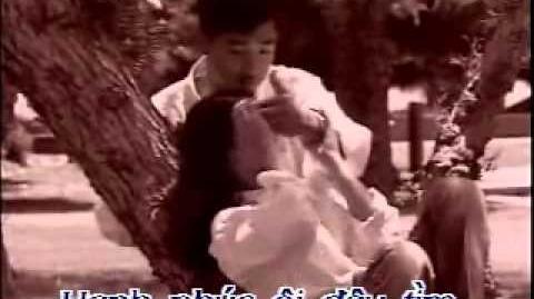 MÔI TÍM - KARAOKE 1991