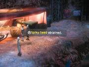 Spikey-seed