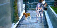 Errand: Lost Dog