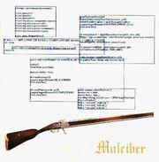 Izaki koharu's weapon rifle