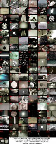 OrientationTrainingIssuesVideo.jpg