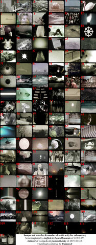 Archivo:OrientationTrainingIssuesVideo.jpg