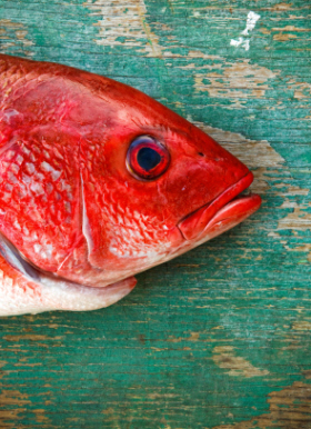 File:Red herring.jpg