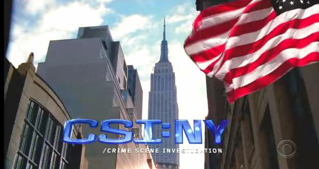 File:CSI NY.jpg
