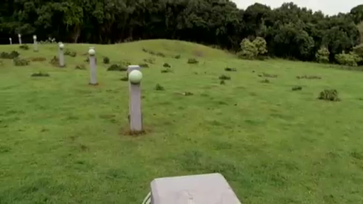 File:Sonic fence.png