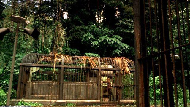 Archivo:Ep3x02-Sawyer's Cage.jpg