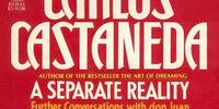 Отдельная реальность (книга)