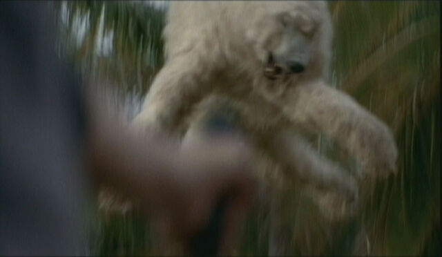 Ficheiro:BearLaunchFreeze.jpg