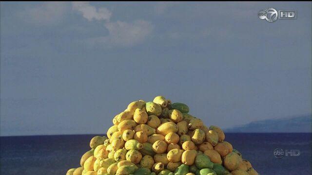 File:4x01 TBOTE fruit.jpg
