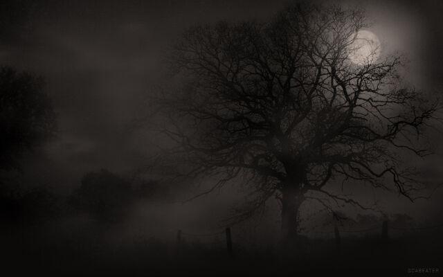 File:Creepy Tree.jpg