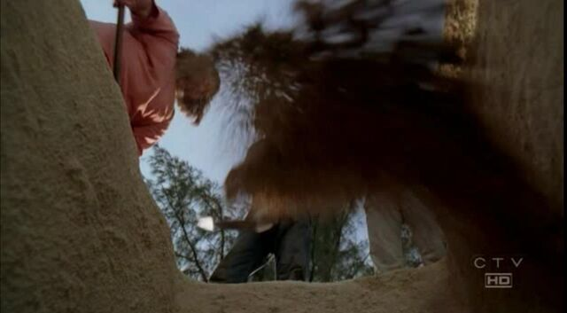 File:Nikki POV buried alive 3x14.JPG