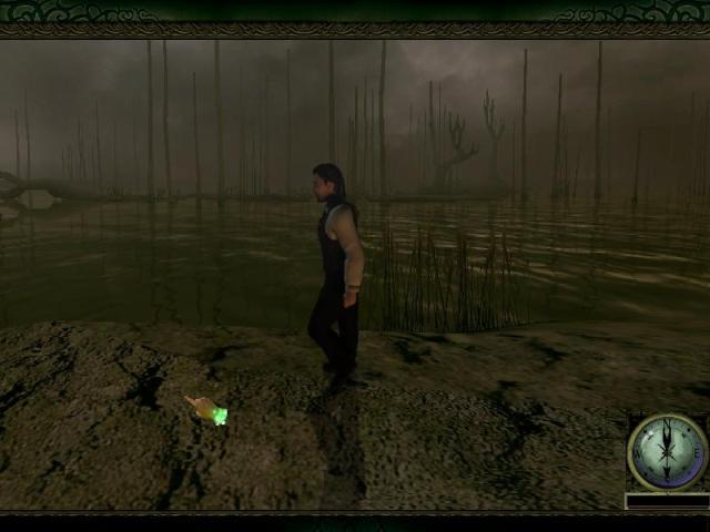 File:316 swampy.jpg