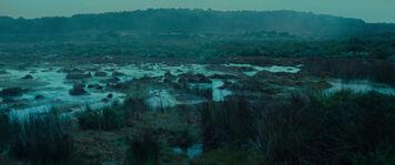 Midgewater Marsheslotr