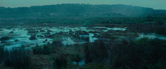 File:Midgewater Marsheslotr.JPG