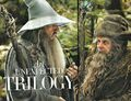 Radagast and Gandalf2