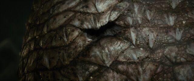 File:Ss hobbit-smaug-06.jpg