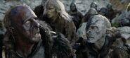 Morgul rat